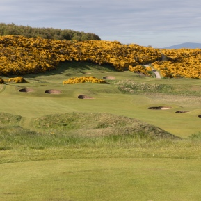 5th Hole Royal Dornoch