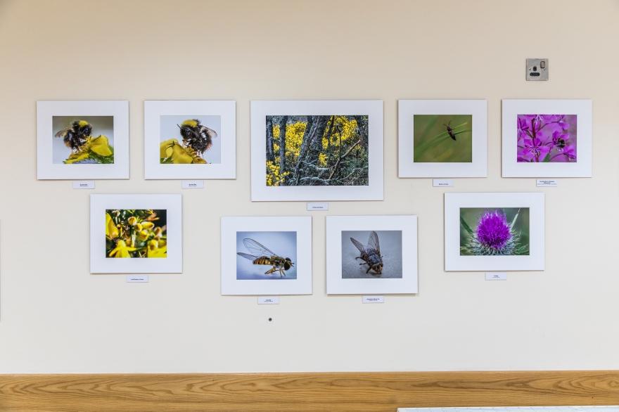 Exhibition-8716